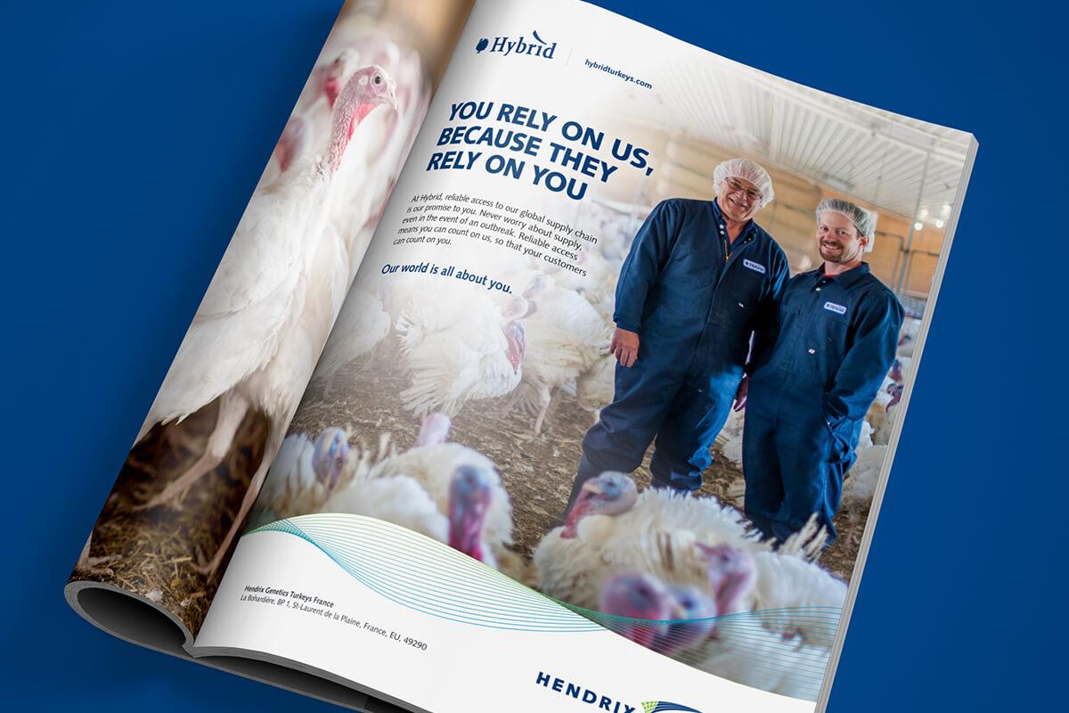 hybrid magazine ad